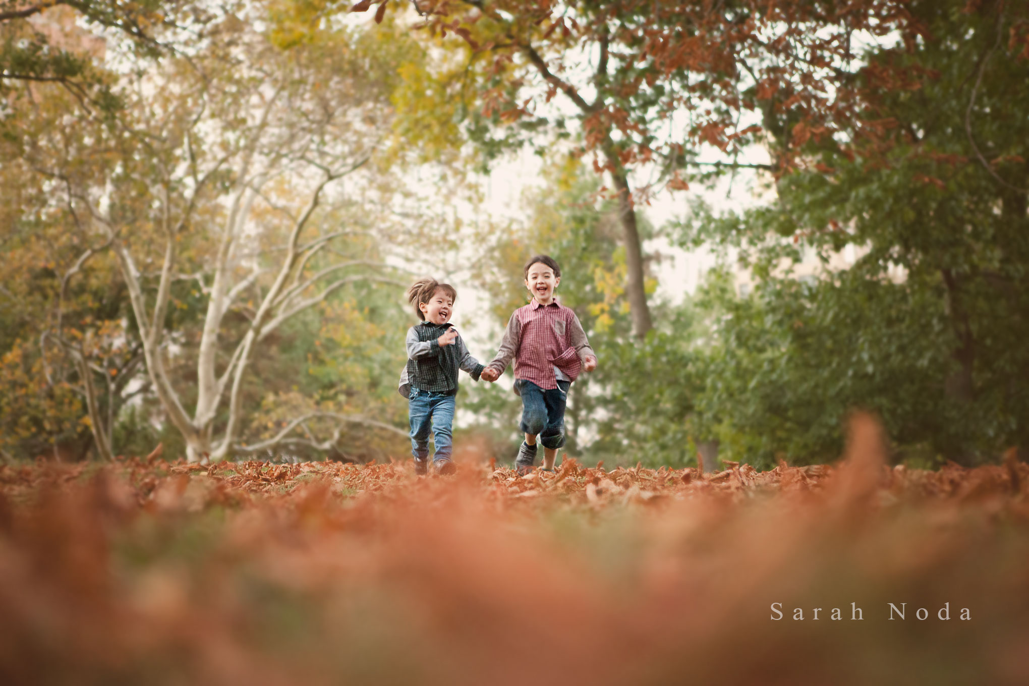 Fall Family portrait, Central Park, NYC, beautiful, family photographer, inspiration